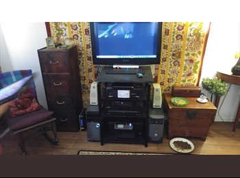 Looking for a laid back roommate