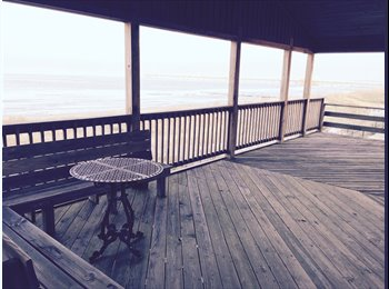 EasyRoommate US - Beach Front Condo- Room for rent!, Hampton - $850 /mo