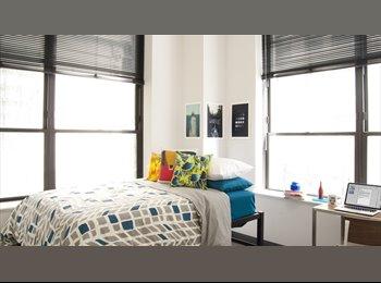 Luxurious Bright Room in the Loop
