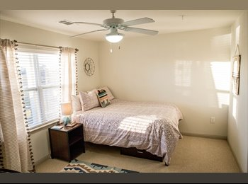 $615 for newest apartments in San Marcos!