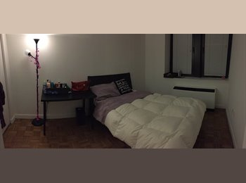Female Roommate for Flex 2 BR apartment