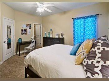 Cozy Room with Wonderful Roommates