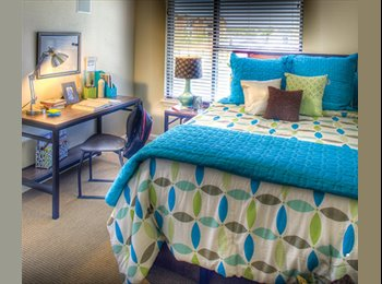 EasyRoommate US - Room for rent already furnished , San Antonio - $514 /mo