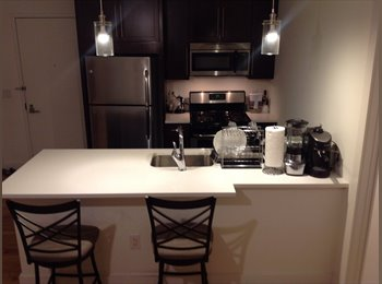 $975 Room for Rent (female roommate only)