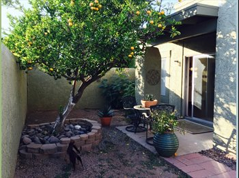 EasyRoommate US - Beautiful 3 bedroom, 2 bath townhome 1 1/2 miles away from UofA, Mountain View - $500 /mo