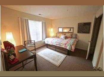 EasyRoommate US - A fully furnished room for rent in a 4 bedroom 4 bath apartment , Harris - Houston - $433 /mo