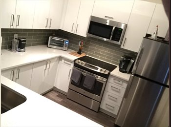 Looking to share my newly renovated 2 bdrm 2 bath apartment...