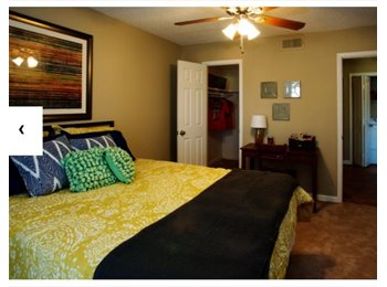 EasyRoommate US - SUBLEASE JANUARY TO JULY, Lubbock - $670 /mo