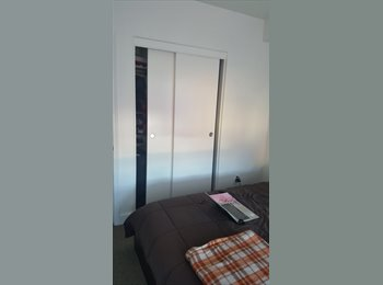 Roommate required to share an apartment