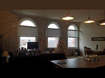 EasyRoommate US - Downtown Loft, Dayton - $500 /mo