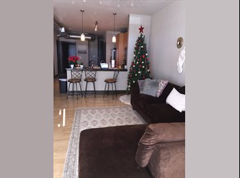 Southend apartment looking for female roommate in 3br