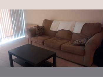 EasyRoommate US - Quiet place right across from University of South Florida, University - $600 /mo