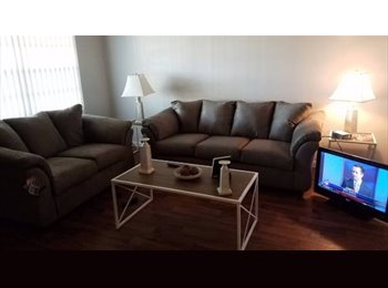 EasyRoommate US - Cute and Quaint!, Clearwater - $600 /mo