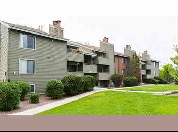EasyRoommate US - Room for Rent in a beautiful 2 bedroom 1 bathrom apartment, Broomfield - $720 /mo
