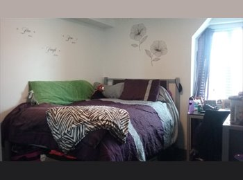 EasyRoommate US - Chestnut Square sublet needed! Available January! Females only!, University City - $1,139 /mo
