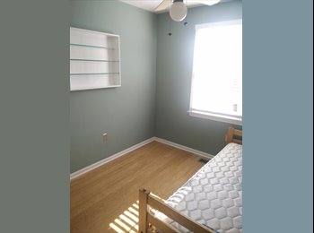 Small room, townhouse, Wheaton/Silver Spring