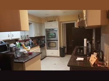 Room for rent in Large House with Pool