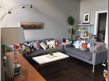 Professional, Gay Male With Unique Duplex Loft in Chicago...