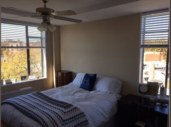 Spacious Room in large 2 BR/1BA in Woodley Park - Utilities...
