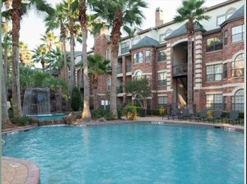 EasyRoommate US -  $880 Private Room and Bathroom for Rent in Luxury Galleria Apartment, Uptown - $880 /mo