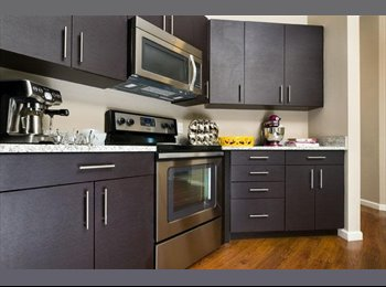 EasyRoommate US - 1 Bed / Private Bath condo-like space available for lease in Lux complex ., Revere - $1,300 /mo