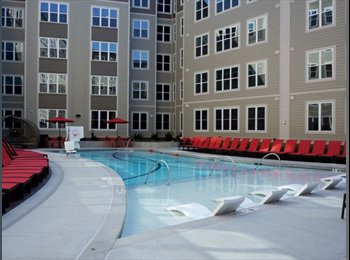 Room available in Stanhope Apartments near NCSU campus