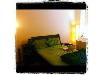 Fully furnished well lit room