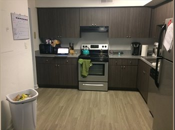 EasyRoommate US - Renovated Townhouse , Gainesville - $440 /mo