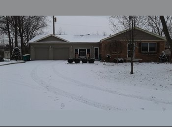 EasyRoommate US - Nice house, Brownstown Charter Township - $400 /mo