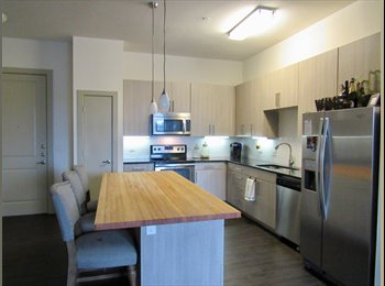 EasyRoommate US - LF lease takeover in East Austin/Lakeshore area. 1 bed, 1 bath, 1 office, Holly - $1,750 /mo