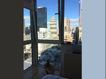 EasyRoommate US - Room in fashion district with a gorgeous view! , Garment District - $2,200 /mo