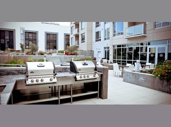 $2500 / 950ft2 - Brand new Luxury apt in the center of...