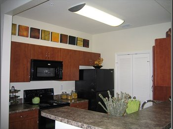 EasyRoommate US - Gorgeous Apartment located off of 528 in Lake Nona. , Pine Castle - $630 /mo
