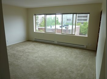 Spacious Apartment on Capitol Hill (No Deposit Needed)