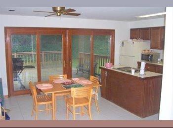 EasyRoommate US - Room for Rent:  10 minute walk to Van Dorn Metro (VA). $625/mo , Franconia - $625 /mo
