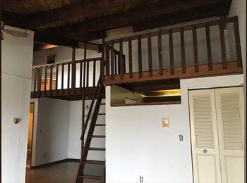 EasyRoommate US - 1 Room Apartment + Loft, Troy - $500 /mo