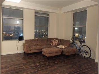 Great view of NYC and spacious apartment