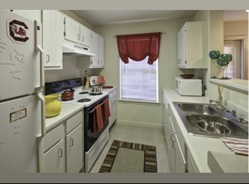 EasyRoommate US - January Rent PAID!! One Room in Ground Floor Apt with Excellent Roommates. Move In Ready! , Cayce - $509 /mo