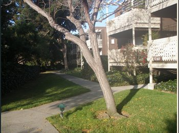 EasyRoommate US - Private entry furnished master bedroom and bathroom, Belmont - $1,500 /mo