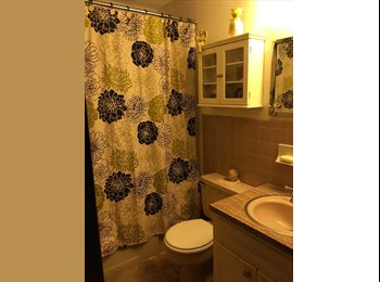 Seeking female room young professional roomate