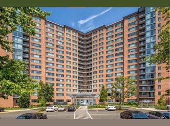 Sublease my 2b/2b apartment in Alexandria VA