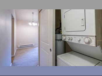 1-bed room available in redmond court apartments for 3...