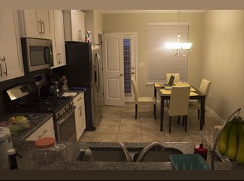 EasyRoommate US - Brand New, Spacious Townhome, Utilities included, Jollyville - $800 /mo