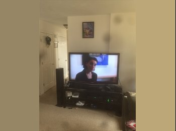 EasyRoommate US - Share a nice duplex??, Worcester - $800 /mo