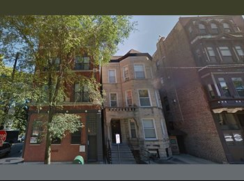 Short term roommate in a great location (Lincoln Park)