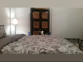 QUIET HARLEM BEDROOM FOR RENT - $750