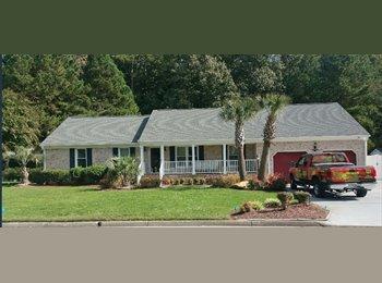 EasyRoommate US - $500 GREAT ROOM! MILITARY/PROFESSIONAL, Chesapeake - $500 /mo