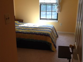 EasyRoommate US - Room for Rent, Newington - $1,000 /mo