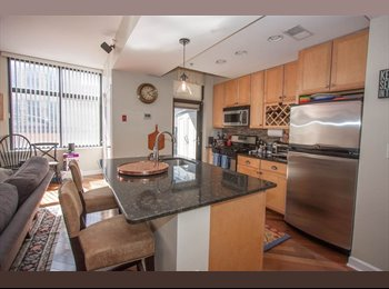 2b2b luxury building with all amenities for only $1450!!!