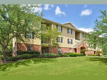 EasyRoommate US - ROOM FOR RENT! ONLY $419, Gainesville - $419 /mo